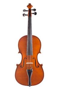 Violino 2015