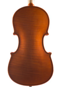Violino 2014, fondo intero
