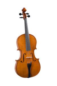 Viola 40 cm, del 2006